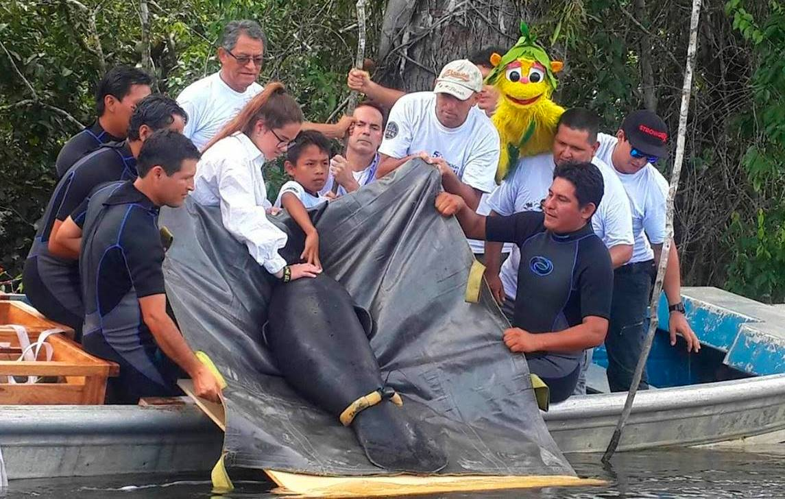 Protagonista del Cambio UPC fomenta programa de conservación ecológica en Loreto