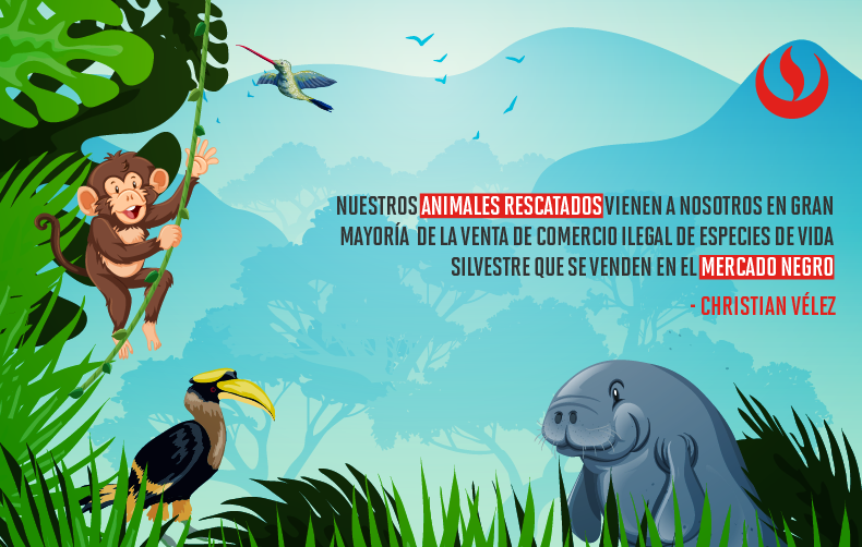 El Centro de Rescate Amazónico: Educando por la biodiversidad en Loreto
