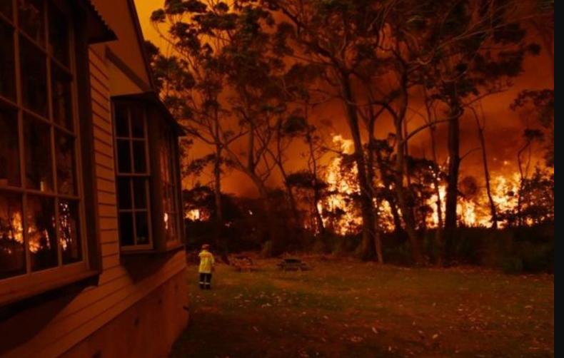 Incendios Forestales: Se han liberado 400 megatoneladas de CO2, un gas que contribuye al calentamiento global